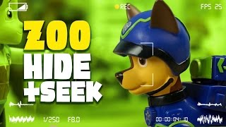 getlinkyoutube.com-Paw Patrol Toys - Zoo Hide and Seek with Spy Chase - a Paw Patrol Toys Video Parody