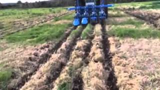 CARRE strip till test in extreme conditions