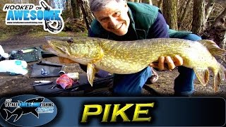 getlinkyoutube.com-Pike fishing for Beginners - Deadbaiting and Floats | TAFishing