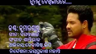 Tamku dekhila pare.... (The inner voice of every lover's heart in odiya language) width=