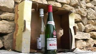 getlinkyoutube.com-DAN WESSON 8  ( shoot bouteille ) cal 4,5 mm