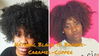 getlinkyoutube.com-How To  Dye Natural Hair Without Bleach   Creme Of Nature Hair Color Demo/Review