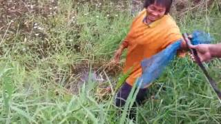 getlinkyoutube.com-ปลาค่อใหญ่!!!  ติดเบ็ด ใส่เบ็ดเหยื่อปู โดยพี่หมี
