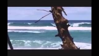 getlinkyoutube.com-Surf Dominican Republic, Dominican Republic Surf Camp presented by LUEX.com