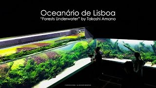 getlinkyoutube.com-Grand Opening - Forests Underwater by Takashi Amano (Lisbon Oceanarium)