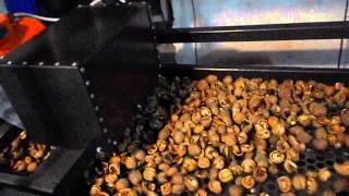 getlinkyoutube.com-Линия по переработке грецкого ореха