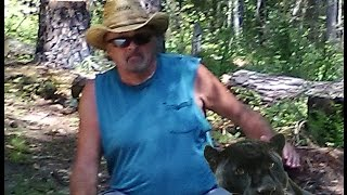 getlinkyoutube.com-Cat Tales . . . Black Panther and Cougar Reports Alabama Adventures