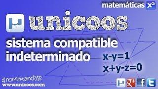 Imagen en miniatura para Sistema Compatible Indeterminado 01