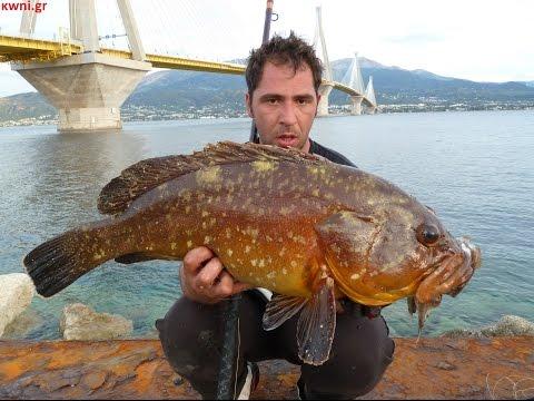 HEAVY CASTING WITH ZAVRAS Ch. ΡΟΦΟΣ (GROUPER) 8,5kg ΨΑΡΕΜΑ ΜΕ ΖΩΝΤΑΝΟ.EXTREME SALTWATER FISHING.