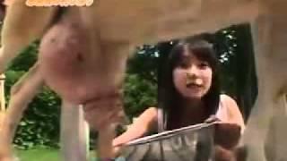 getlinkyoutube.com-戸田恵梨香が乳しぼり体験でお尻ちらり。.mp4
