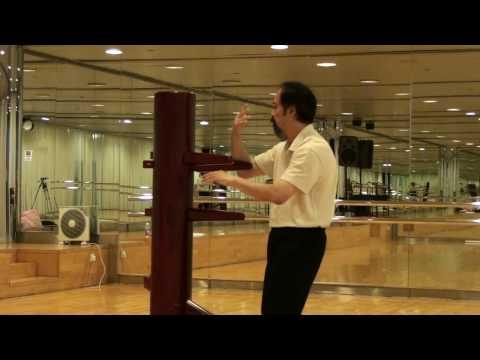 Ving Tsun - Wooden Dummy - Wing Chun (Teaching demonstration)