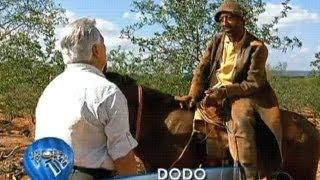 Galego Aboiador Vaqueiro abandonado desprezado,estou velho acabado FTADL Arlindo Maduro.BDJ