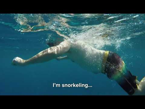 Randy goes snorkeling for the first time at the Great Barrier Reef!