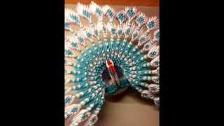 getlinkyoutube.com-origami 3d royal peacock tutorial in steps
