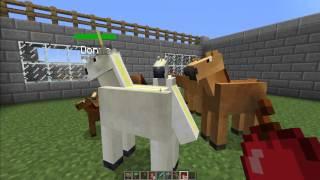 getlinkyoutube.com-MINECRAFT [V1.2.5] Mo' Creatures Mod Showcase (Minecraft Zoo)