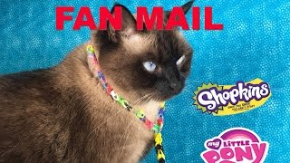 getlinkyoutube.com-Cinco De Mailo Fan Mail September Opening Unboxing With Shopkins | PSToyReviews