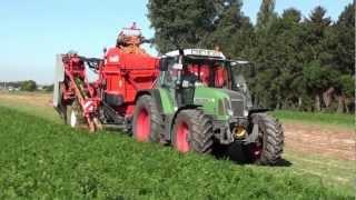getlinkyoutube.com-Dewulf GBC - 1-row trailed carrot harvester