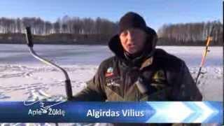 getlinkyoutube.com-Apie žūklę 2014 02 01. Poledinė lydekų žūklė švytuoklėmis.