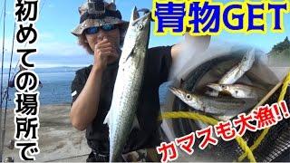 getlinkyoutube.com-#4 車で釣りの旅!佐賀~東京 2日目カマスが爆釣!青物も