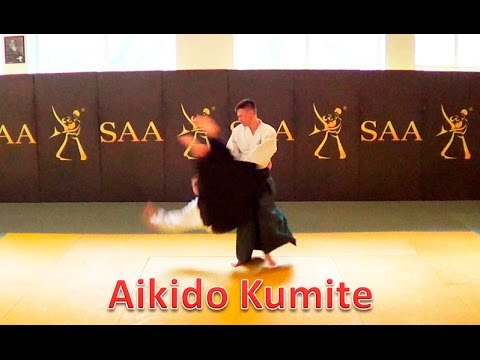 Aikido Kumite | Counter Techniques Practice