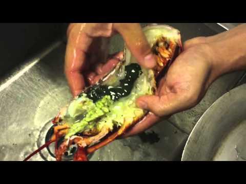 Como Cocinar Langosta