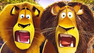 getlinkyoutube.com-Madagascar Escape 2 Africa All Cutscenes | Full Game Movie (PS3, X360, PC, Wii)