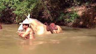 getlinkyoutube.com-Atravessia da tropa no rio turvo - Comitiva AMOG Iporá - Trindade 2013