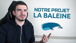 NOTRE PROJET - LA BALEINE