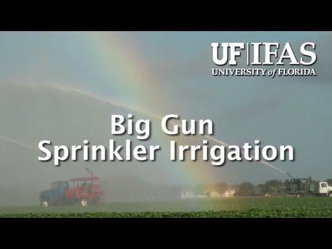 Big Gun Sprinkler Irrigation
