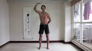 Dance of Shiva Basics Lesson 2: Forward Movement and Backward Movement