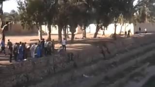 getlinkyoutube.com-هجوم كلاب على طفل صغير بريكة الجزائر