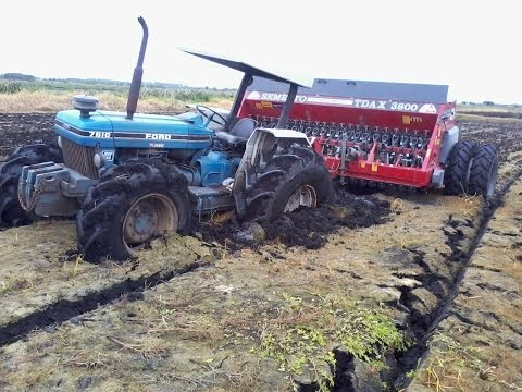 Plantio de Arroz 2013 / Planting Rice
