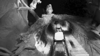 getlinkyoutube.com-Splash Mountain - Night Vision (HD POV : Full Ride) - Disneyland Resort California