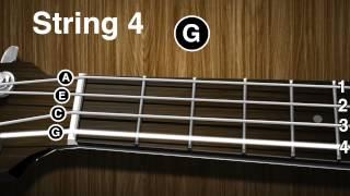 getlinkyoutube.com-How to tune a Ukulele - Ukulele tuning video ( gCEA )