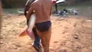 getlinkyoutube.com-ตกปลาจีนที่จังหวัดลำปางคับ ตัวหย้