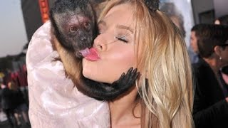 Best Fails Ever Girls And Monkey Funny Compilation   Best Of Viral Video