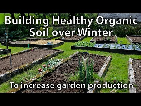 How to Build Soil over Winter Ready for Spring to Grow Amazing Vegetables
