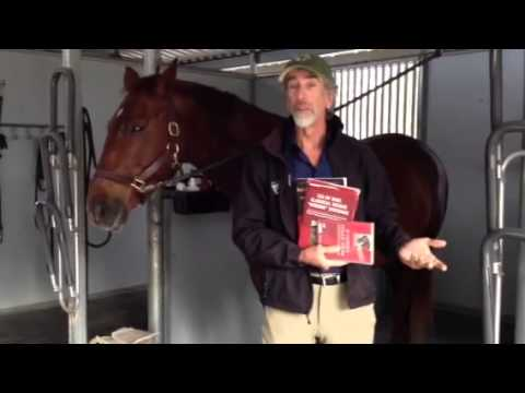 Will Faerber's Book Club: If Horses Could Speak