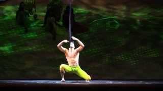 getlinkyoutube.com-Cirque du Soleil Act, Saulo Sarmiento, Aerial Pole