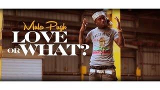 getlinkyoutube.com-YNW$ Mula Pugh - Love Or What?