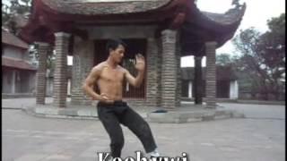 Hmoob ky son kungfu