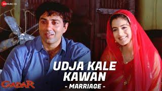 Gadar - Udd Ja Kaale Kanwan (Marriage) - Full Song Video | Sunny Deol - Ameesha Patel - HD