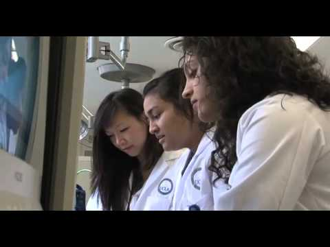 David Geffen Scholarship Fund | David Geffen School of Medicine UCLA