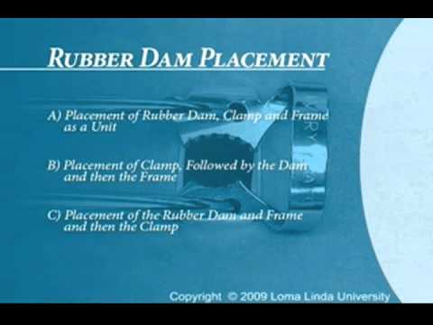 Endodontics Torabinejad 14 1 Rubber Dam Placement Introduction