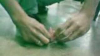 getlinkyoutube.com-Bala 7 Belo, furando um coco verde!