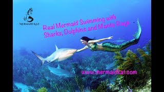 getlinkyoutube.com-Real Mermaid swims with dolphins, rays and sharks