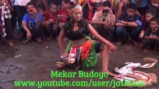 getlinkyoutube.com-Mekar Budoyo Putri, 25 Januari 2015