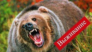 getlinkyoutube.com-Выживание в Сибирской тайге 3 часть