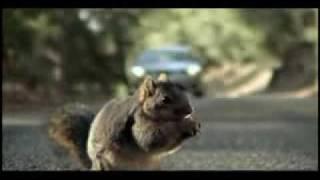 getlinkyoutube.com-Screaming Squirrel Superbowl Bridgestone Commercial