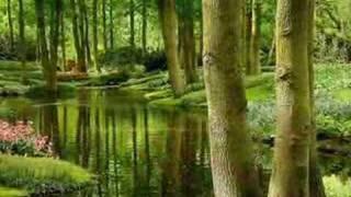 getlinkyoutube.com-Blue Planet...(beautiful nature)...music Igor Krutoi